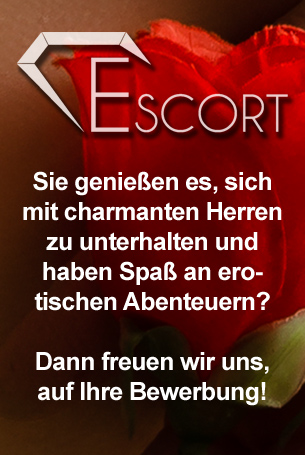 Job als Escort